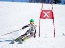 50. Goldriedrennen und Bezirksmst. - 22.01.2011
