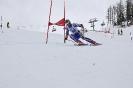 Tirol Cup Rennen - 19.03.2011