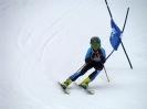 53. Goldriedrennen - 02. Februar 2013