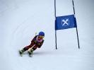 Goldriedrennen 2013JG_UPLOAD_IMAGENAME_SEPARATOR8