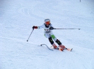 Landescup 2014 Slalom