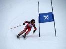 Goldriedrennen 2013JG_UPLOAD_IMAGENAME_SEPARATOR10