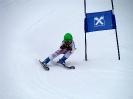 Goldriedrennen 2013JG_UPLOAD_IMAGENAME_SEPARATOR12