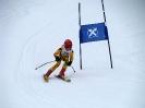 Goldriedrennen 2013JG_UPLOAD_IMAGENAME_SEPARATOR6