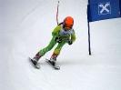 Goldriedrennen 2013JG_UPLOAD_IMAGENAME_SEPARATOR7