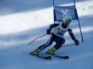 Landescup 2014 Riesentorlauf